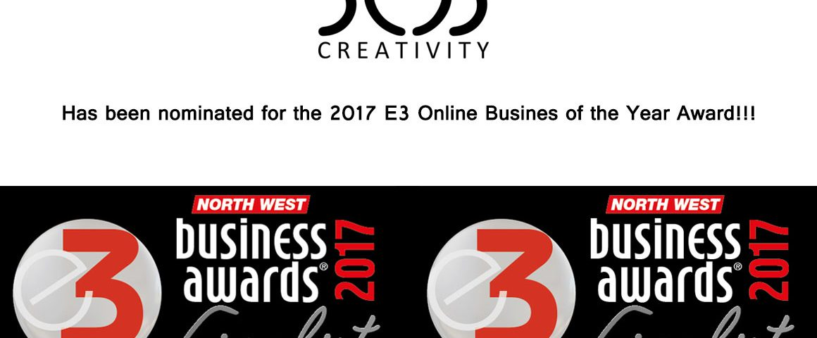 2017 E3 Online Business Of The Year Awards Finalist