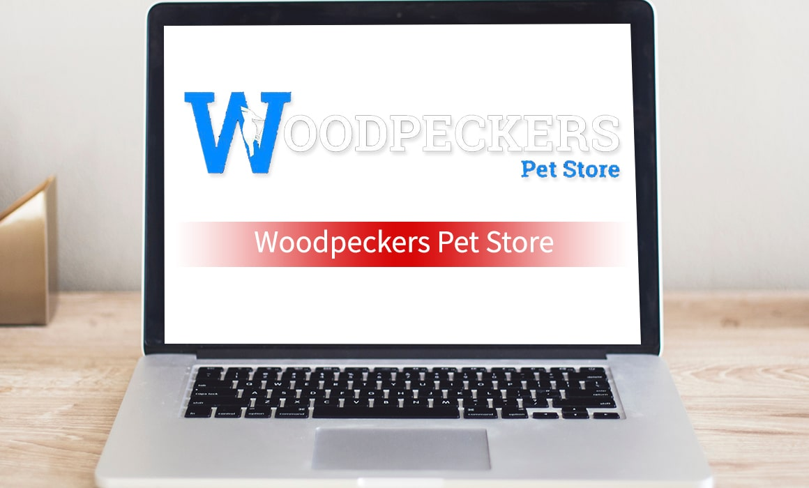 Woodpeckers Pet Store – SOS Creativity Case Study